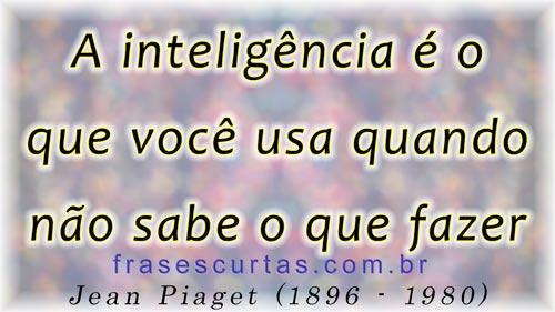inteligência é o que você usa quando não sabe o que fazer