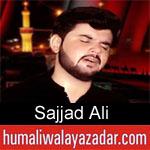 https://humaliwalaazadar.blogspot.com/2019/08/sajjad-ali-nohay-2020.html