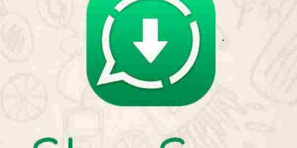 Download Whatsapp Story Saver