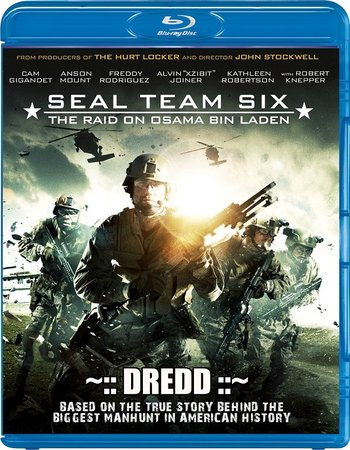 Seal Team Six The Raid on Osama Bin Laden (2012) Dual Audio 720p