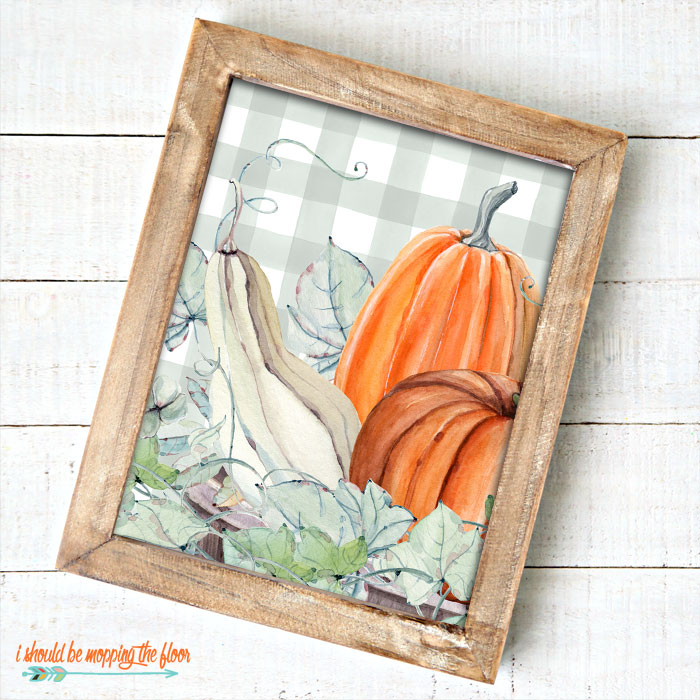 Pumpkins and Gourds Printable