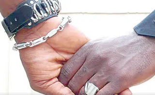 Police Arrest Several Partying Homosexuals In Anambra