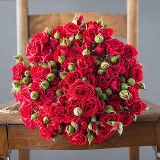 Red Rose Floral Valentine's Day imported flowers