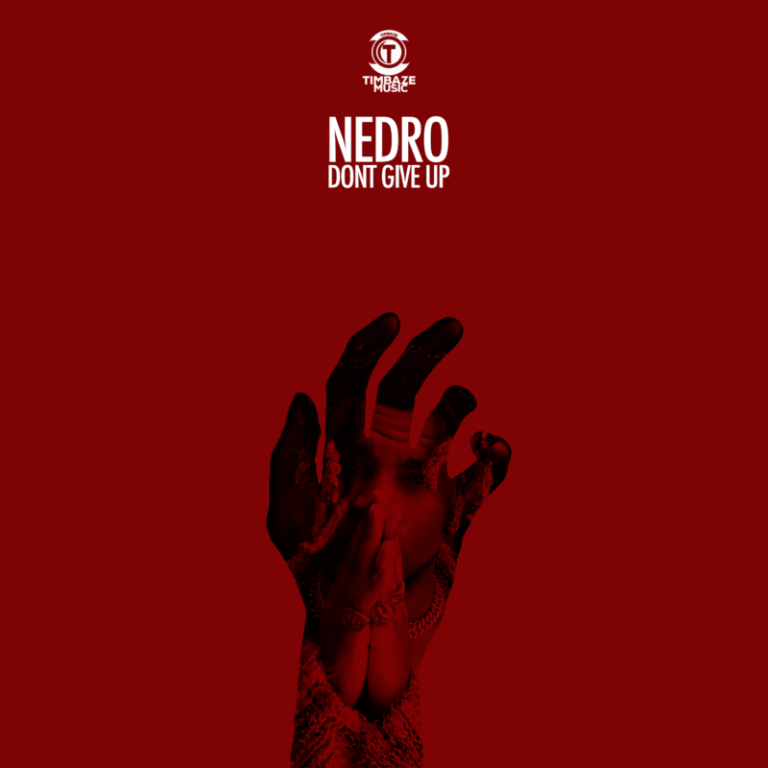 """Nedro – """"Don't Give Up"""" (Prod. by S Kool Beat) #Arewapublisize"""