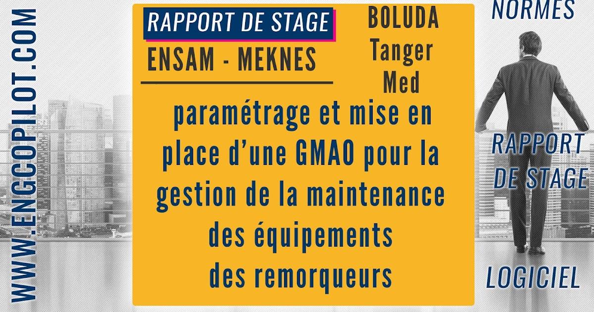 Télécharger Rapport de stage PFE : paramétrage et mise en ...
