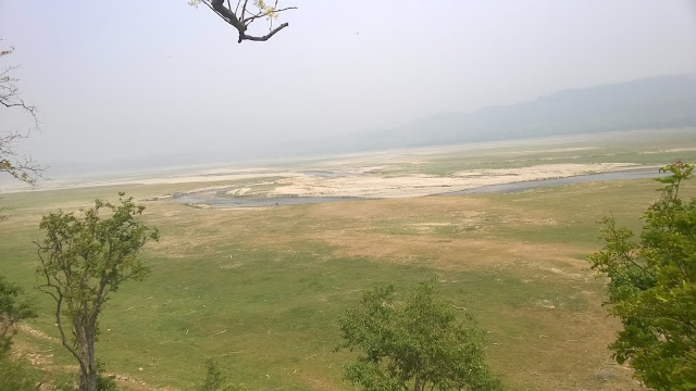 Project Tiger, Ramganga river, Dhikala