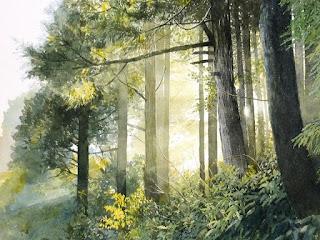 Хокку о лесе