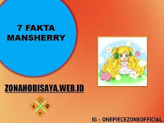 Fakta Mansherry One Piece