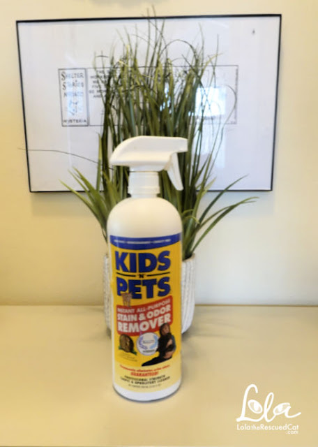 Kids N' Pets Instant All-Purpose Stain & Odor Remover
