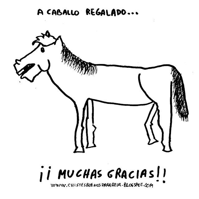 A caballo regalado... ¡Muchas gracias!