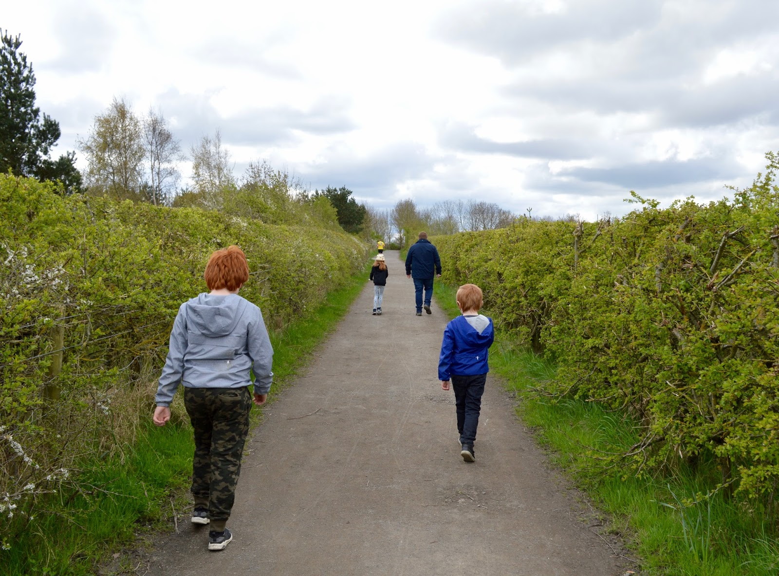 50+ Family Walks & Trails to try across North East England - Rising Sun Country Park