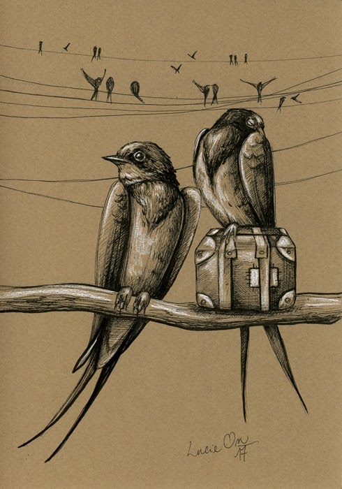 12-All-Packed-Lucie-Ondruskova-LucieOn-A-Glimpse-of-Fairyland-Animals-in-Drawings-www-designstack-co
