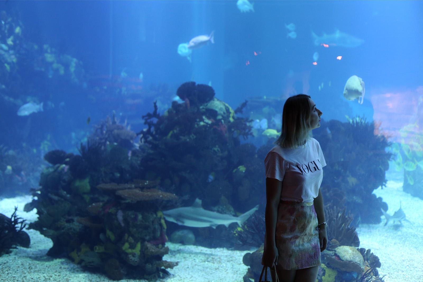 Największe Oceanarium w Europie - Lizbona