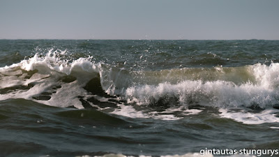 banguojanti jūra
