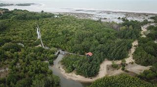 Labuhan Mangrove Education Park