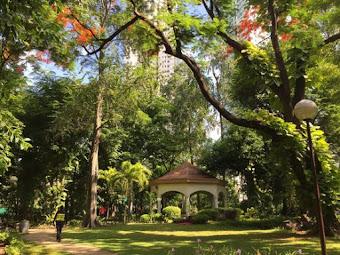 9 Best Things To Do In Washington SyCip Park + A Visit To Jaime Velasquez Park