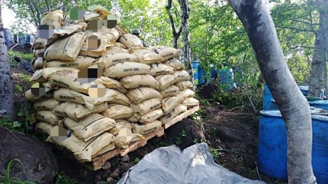 """Fuerte golpe a """"El Mencho"""" el gobierno le deja sorpresa de fin d año y le tumban 13 toneladas de droga en Santa María del Oro, Jalisco"""