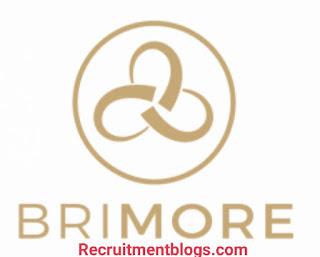 Paid Summer Internship program for undergraduates at Brimore