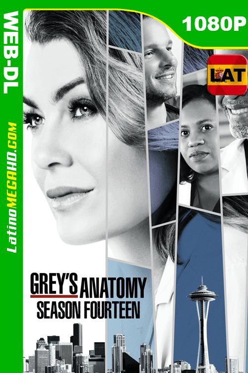 Anatomía según Grey (2013) Temporada 14 Latino HD WEB-DL 1080P ()