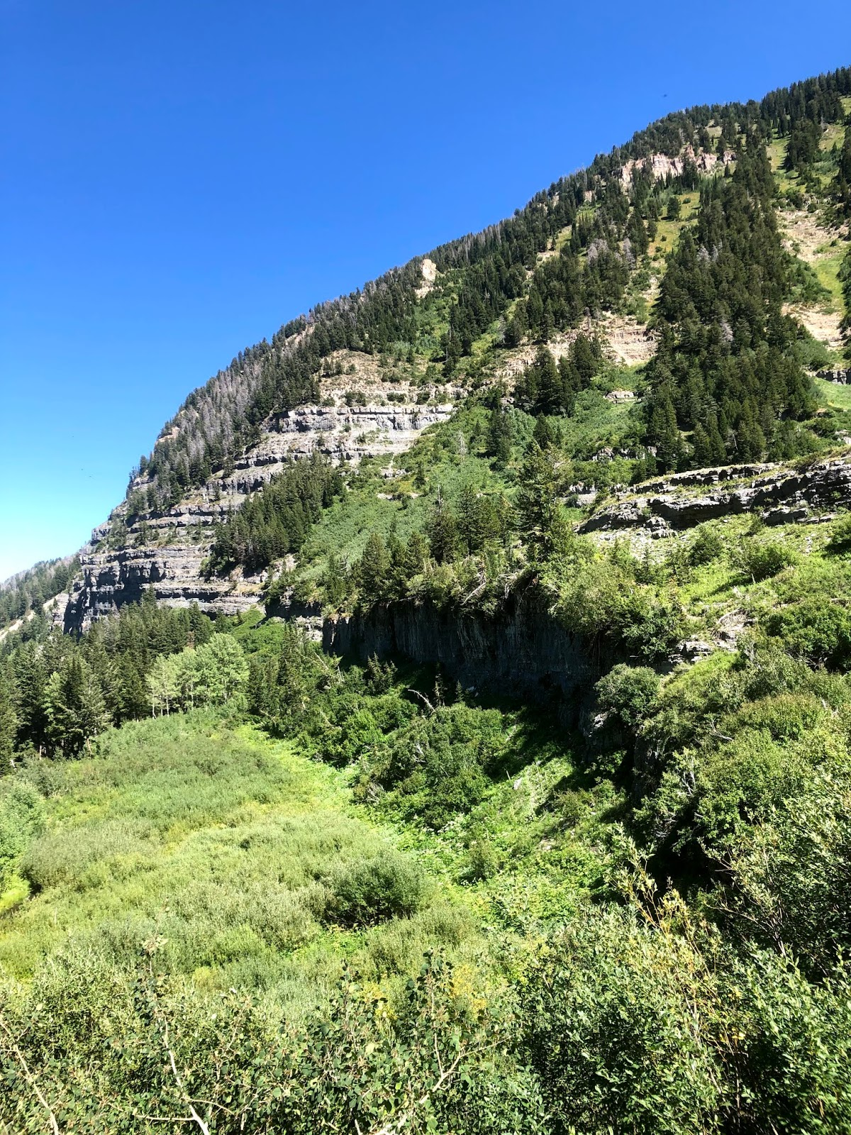 mount timpanogos, mount timpanogos hikes, hiking in the mountains, trail running, trails, running, mountains, mountain trails, utah mountains, running up a mountain, where to hike in utah,