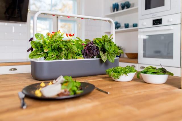Smart Garden 9, Kebun Pintar Penghasil Makanan Segar
