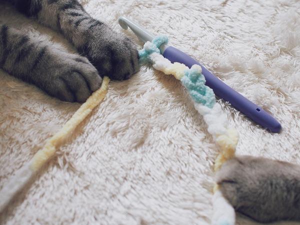 手編みの猫じゃらしを掴んでいる猫たちの手