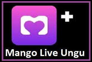Mango Live Ungu