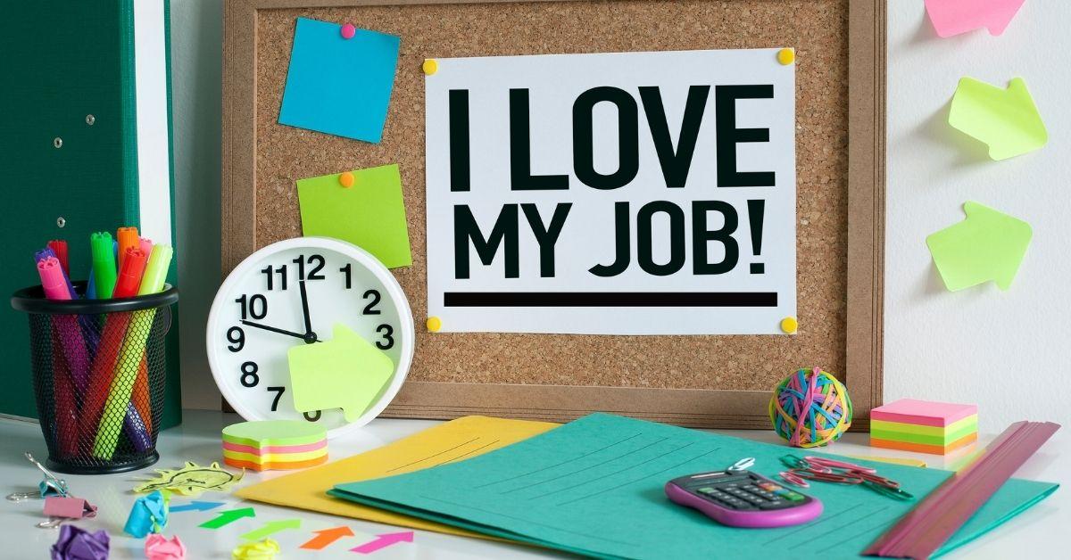 توصيات مهنية لطلاب الجامعات