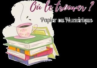 la vie revee des chaussettes orphelines vareille marie happybook