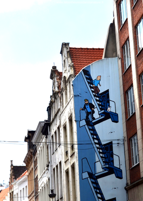 Street Art Bruxelles Parcours BD Tintin