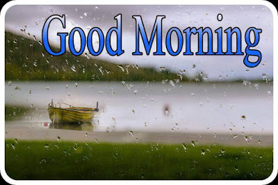 Good morning with rain photos