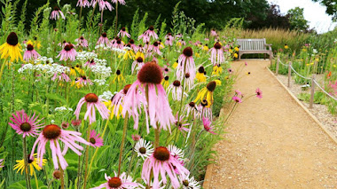 Grasslands Garden, las praderas de los jardines del Museo Horniman de Londres