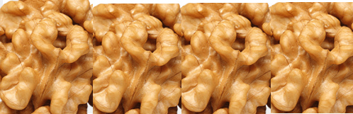 Conclusion for walnuts