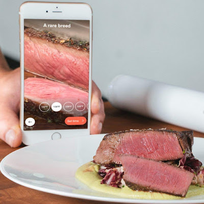 ChefSteps Joule Sous Vide review