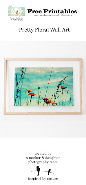 Paper Meadows Photography Blog-Free Printable-Orange flower wall art printable.