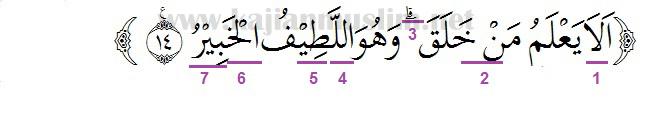 Hukum Tajwid Surat Al-Mulk Ayat 14