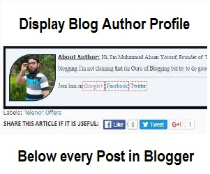 Display Author Profile Below Every Post in Blogger