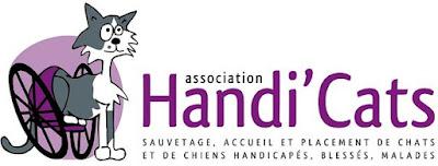 Association pour le recueil des animaux handicapés