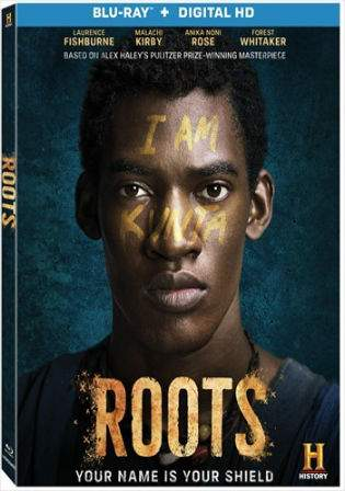 Roots Part 4 (2016) BRRip 700MB Hindi Dual Audio 720p Watch Online Full Movie Download bolly4u