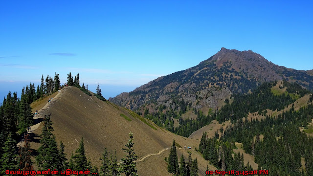 Klahhane Ridge Hike Hurricane Ridge