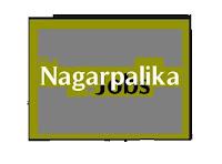 Borsad Nagarpalika - gvtjob.com