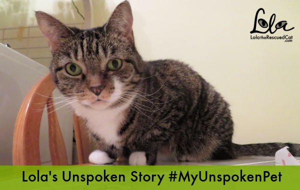 #MyUnspokenPet CUDDLY intro graphic