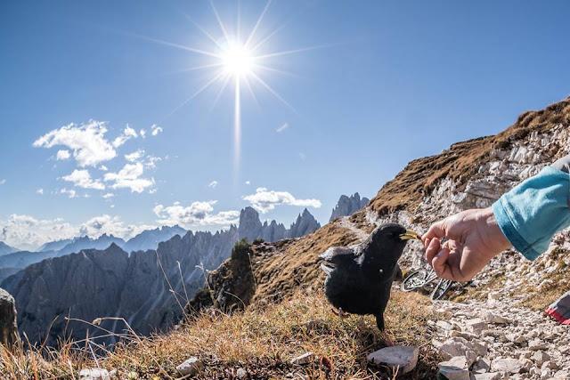 MTB in der Dolomitenregion Drei Zinnen