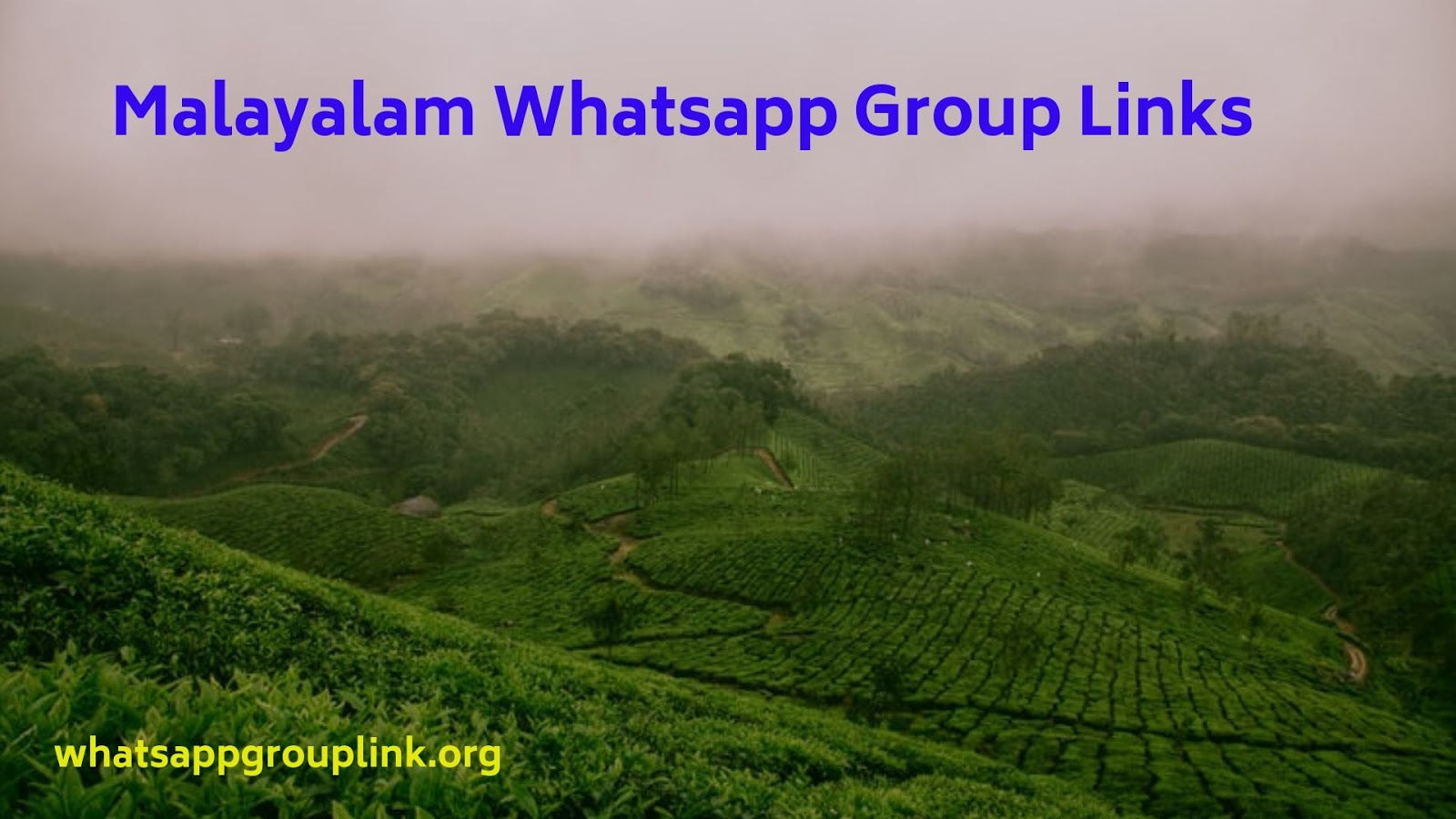 Whatsapp Group Link: Malayalam Whatsapp Group Links