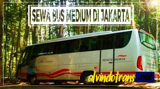 Sewa Bus Medium di Jakarta
