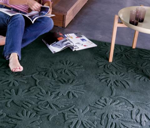 Carpets that distinguish 2