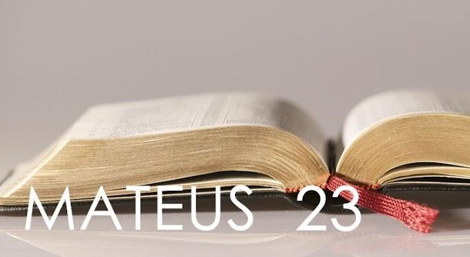 Palavra do Dia: Bendito aquele que vem em nome do Senhor
