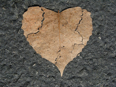 cara membedakan cinta sejati dan cinta nafsu