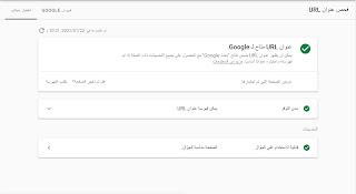 لقطة شاشة لنتيجة اختبار عنوان اورل المباشر على أدوات مشرفي المواقع