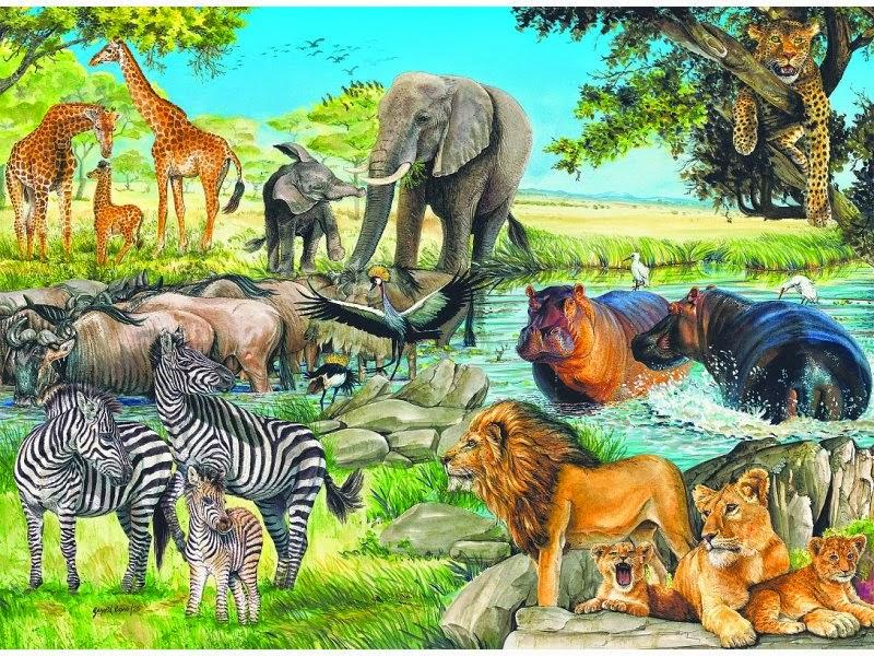 разнообразьте сюжетная картинка животные жарких стран годами фурцевой говорят